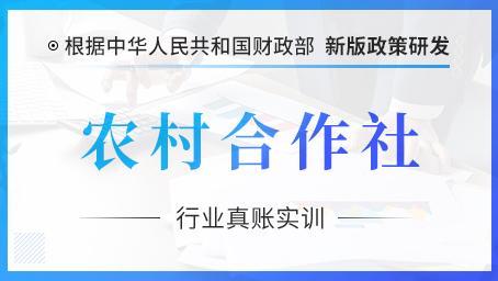 农村合作社行业ManBetXapp下载真账实操