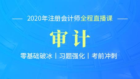 2020年注会审计习题强化班第四讲