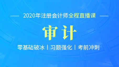 2020年注会审计习题强化班第八讲