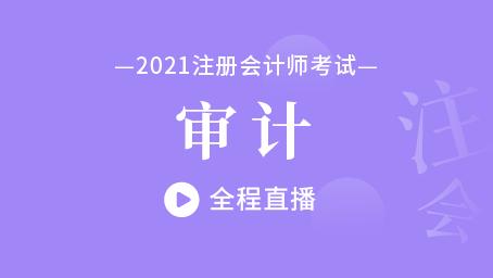2021年注会审计习题强化班第五讲